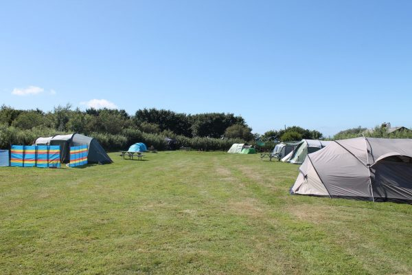 Pembrokeshire Campsite, Camping near Little Haven, Coastal camping, Campsite in Pembrokeshire