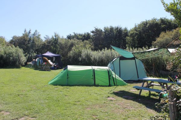 Pembrokeshire campsite, camping in Little Haven, Camping in Pembrokeshire, camping by the coast