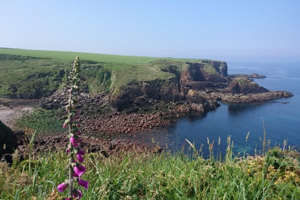 Pembrokeshire Coastal Path, Pembrokeshire National Park